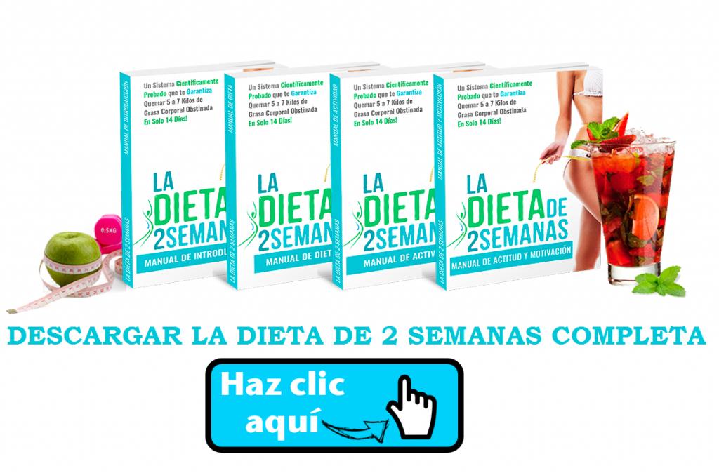 la-dieta-de-2-semanas-pdf-gratis-brian-flatt