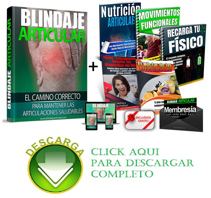 Blindaje-Articular-Pdf-Gratis